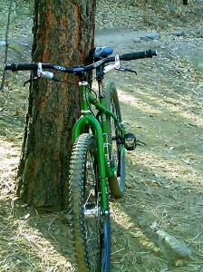 sopt-tree