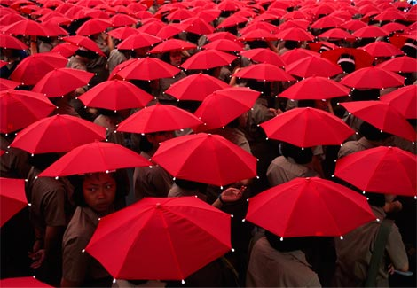 17 best images about red on pinterest declaration of healthy