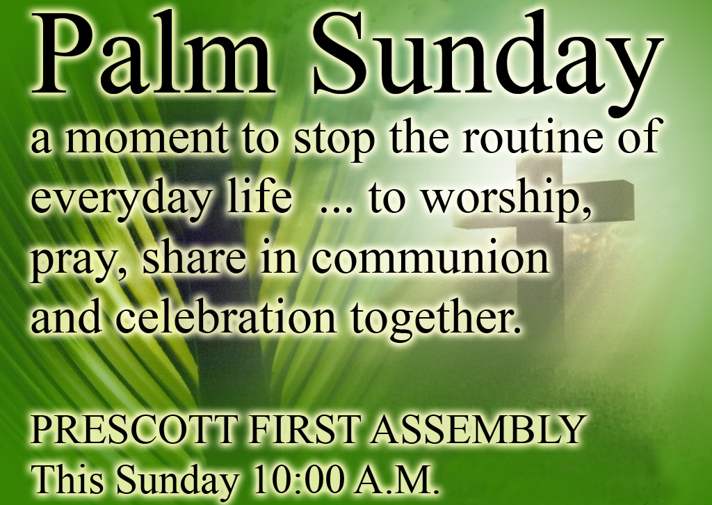 Happy Palm Sunday from The Good News Cartoon to you!! www
