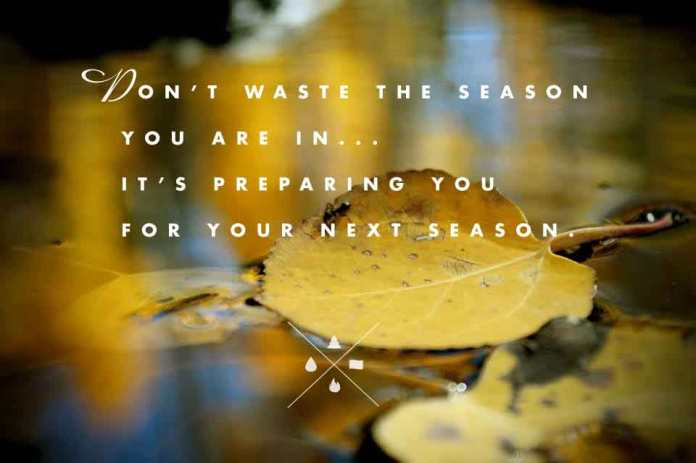 dont-waste-the-season