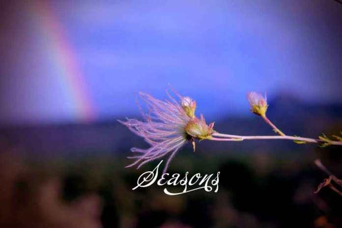 seasons-slide1