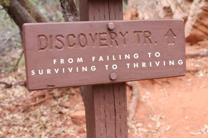 failing-surviving-thriving