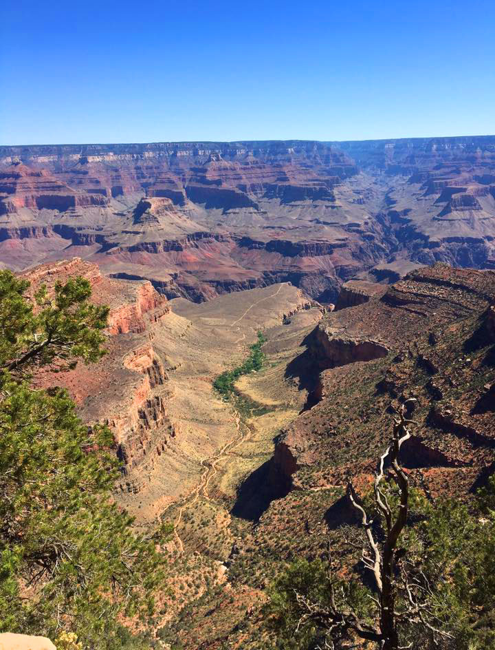 grand-canyon-pic